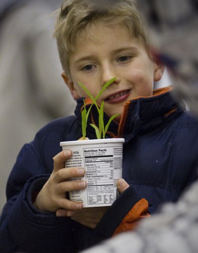 Gannon Minnick, 7, Lawrence, checks out plants at a vendor at the seed fair.