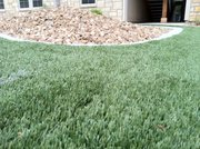 Artificial turf recently installed at the Tuckaway Apartments at Frontier in West Lawrence. 