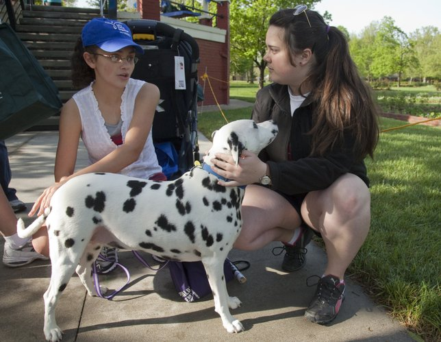 Elaney Pickering, left, chats with her friend Hannah Novinger before the start of the Lawrence Arthritis Walk on Saturday, May 7, 2011, in South Park. Elaney was honored as a hero during the event, which raised about $10,000 for the Arthritis Foundation. Also in the picture is Elaney's dog named Justice.