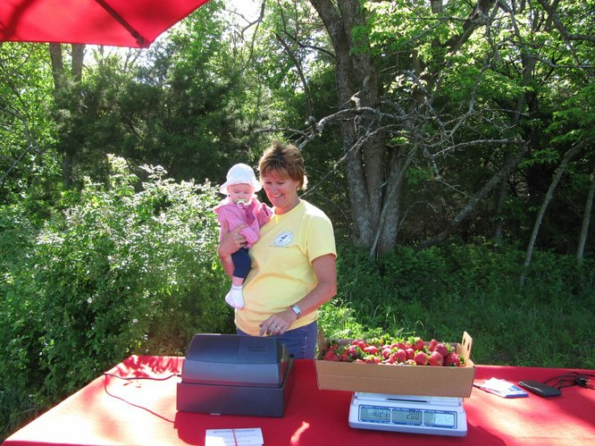 Jane Wohletz holds Emily Unekis, whose mom and older silblings were busy picking strawberries Monday, May 16, 2011, at her farm, southeast of Lawrence. They were picking strawberries for lunch at Cordley School.