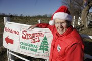 Lyn Walther, co-owner of Strawberry Hill Christmas Tree Farm west of Lawrence, sold her first Christmas tree in 1984. During the summer months, tree farmers have to deal with drought, disease and insects.