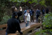Stefan Petrovic, Lawrence, captures the moment during a sightseeing trip to the Muir Woods, 11 miles north of the Golden Gate Bridge in the San Francisco Bay area. Petrovic, who will be an eighth-grader at South Middle School, was in the area as part of the United States team competing in the National Geographic World Championships, ending July 27, 2011.