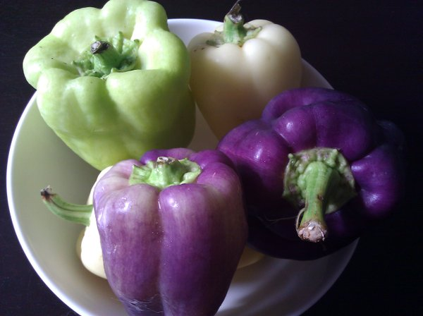 Colorful peppers from Rolling Prairie and the Farmers' Market.