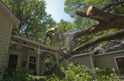Richard Wyrick cuts away a large section of a tree on Friday, Aug. 19, 2011, that went through the roof of a front porch in North Lawrence during overnight storms. High Plains Tree Service employees, like Wyrick, were busy Friday cleaning up damage from the storms.