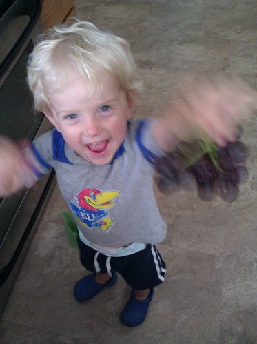 That Grape Monster is so fast it's hard to get photographic proof.