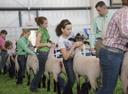"Holly Swearingen, 13, Eudora, in green, keeps her eye on the judge and sets her Hampshire lamb during competition at the Kansas State Fair, Friday, Sept. 10, 2011 in Hutchinson..""You&squot;re kind of nervous before you go in but when you get in there you just got to let all that go."" said Swearingen. ""I just got to concentrate."""