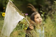 Maya Herrera, 11, Lawrence, looks for monarch butterflies Sunday at the Prairie Park Nature Center. Those who were able to catch and tag a butterfly received a certificate that contained the tag number. By going to a website, they will be able to see if their butterfly gets caught again in the future.