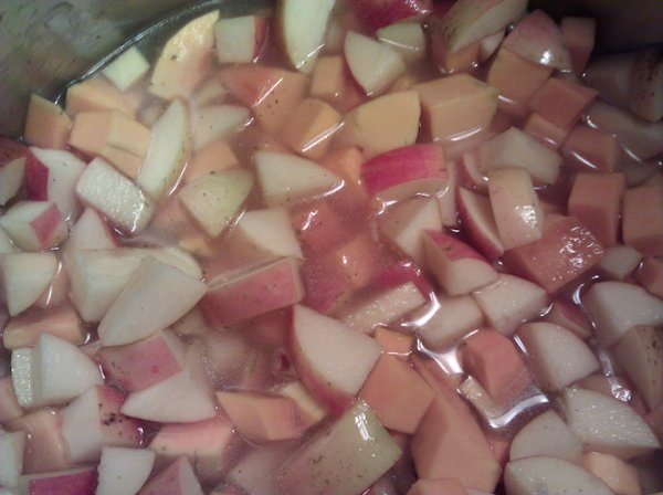 Apples and squash simmer before being blended with an immersion blender.