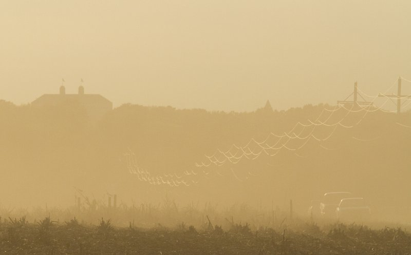 In fields east of Lawrence, cars on N. 1500 Road are barely visible from the dust of a late season corn harvest.