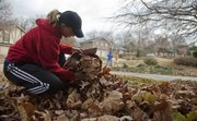 "Stefanie Carnahan, Kansas University freshman from Beckemeyer, Ill., rakes leaves at a central Lawrence home to help raise money for Habitat for Humanity. Students from the Habitat campus chapter volunteered for odd jobs in the Lawrence community Saturday in exchange for donations to Habitat. In the past the student program ""Hire-A-Habitat"" has raised more than $4,000 toward helping the local Habitat for Humanity."
