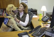MCLAREN, A SERVICE DOG IN TRAINING, goes to work with Nancy Giossi at her job with Kansas University Continuing Education. Giossi, through KSDS Inc. in Washington, Kan., trains puppies to become working companions for people with various needs.