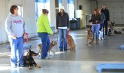 Dog owner Linda Barrington, Baldwin City, left, stands as Melodie Brouhard, Lawrence, second from left, and her dog Middie walk by other dog owners and dogs as part of a Mutts and Manners training exercise Saturday at the Douglas County Fairgrounds, 2110 Harper St.