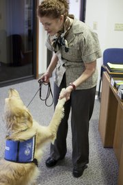 "Nancy Giossi plays with McLaren, a 2-year-old golden retriever who will eventually become an assistance dog, at the Kansas University Department of Continuing Education. Giossi has been a ""puppy raiser"" for nearly a decade for KSDS, and she'll soon be sending McLaren back to the training center for the final portions of his training."