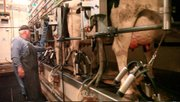 Randy Florys family has been milking cows on the Flory dairy farm for more than 60 years in Douglas County. Thats going to change March 7 after the farm will have an auction selling its milking equipment. Soon after, the Florys will begin raising dairy cattle for a massive outfit in Arizona.