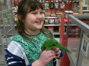"Reagan Garcia, a second grader at Broken Arrow Elementary, visits with ""Sassy Girl,"" a rare lorikeet, at Pet World, 711 W. 23rd Street. Reagan met the bird at animal camp, and had been visiting the bird several times a week. Sassy Girl was stolen from the store Feb. 6 and has not yet been located."