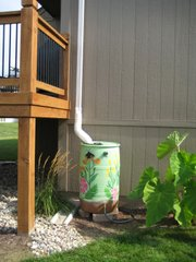 A decorated rain barrel is connected to a downspout in a backyard, where it will capture rainwater for watering garden beds.