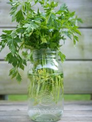 A mason jar can be used as a vase for cut flowers or to keep cut herbs fresh, as shown.