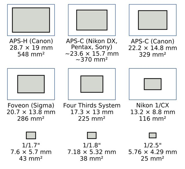 Digital Camera Sensor Chart a Digital Camera's Sensor Size