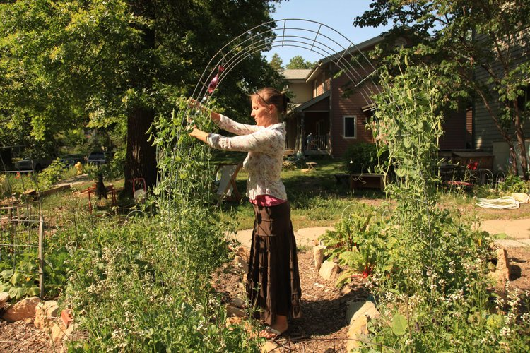 Garden revolution on Delaware Street Community has three of 21