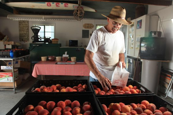 David Vertacnik, who lives at 1403 E. 1850 Road, east of Lawrence, has a banner first year of peaches.