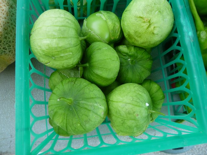Tomatillos, sometimes called Mexican Ground Cherries, available from Avery's Produce.