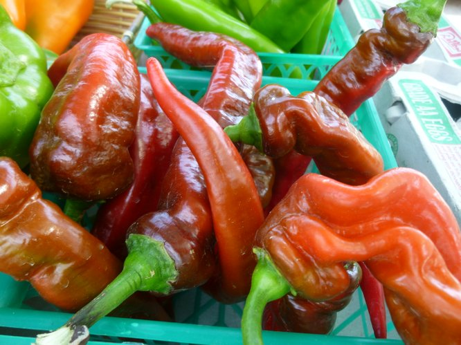 Hot Peppers and Hotter Peppers from Avery's Produce at Cottin's Hardware Farmers Market.