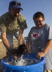 Twelve-year-old Ian Archer and his father, Todd, both of Lawrence, receive a soapy shower when their chicken tries to escape a bucket of water as the two participate in a chicken wash Saturday at the Garzillo farm southwest of Lawrence. The annual wash is in preparation for the Douglas County Fair.