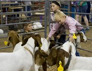 From left, Emmitt Johns, of Topeka, Claire Wilson, of Lawrence, and Bryce Wilson, of Lawrence, pet goats before the start of the livestock auction Saturday at the Community Building at the Douglas County Fairgrounds. Bryce's goat, Timmy, was one of many animals auctioned off at the event.