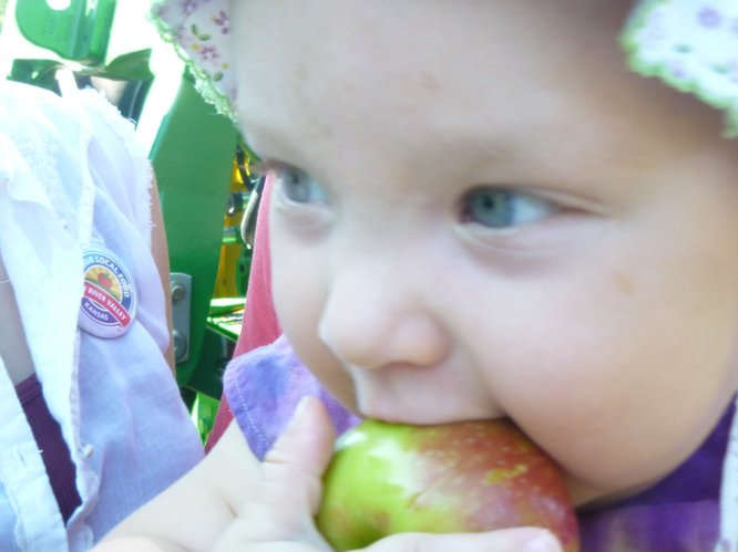 An early local apple harvest is enjoyed by market patrons of all ages at Cottin's Hardware Farmers Market.