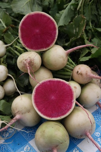 Unique varieties of produce can often be found at local farmers markets, like these watermelon radishes.