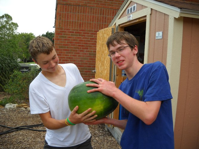 TJ and Colin show their love for the heirloom Moon and Stars watermelon, 2011