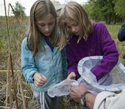 Annika Syverson, 11, left, and Adi Spears, 11, both of Lawrence, look over a net full of butterflies they helped tag at the Baker Wetlands on Saturday as part of the Monarch Watch tagging event.