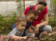 Graham Hall, 2, carefully touches a monarch butterfly while Landon Rake, 2, and his mother, Rachel Rake, watch at the Fall Harvest Festival at Pendleton's Country Market on Sunday, Sept. 16, 2012.