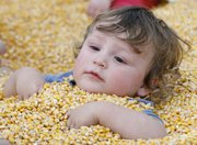 One-year-old Evan Callshim, of Lawrence, lies back in a tub of corn Sunday at the Fall Harvest Festival at Pendleton's Country Market, 1446 E. 1850 Road.