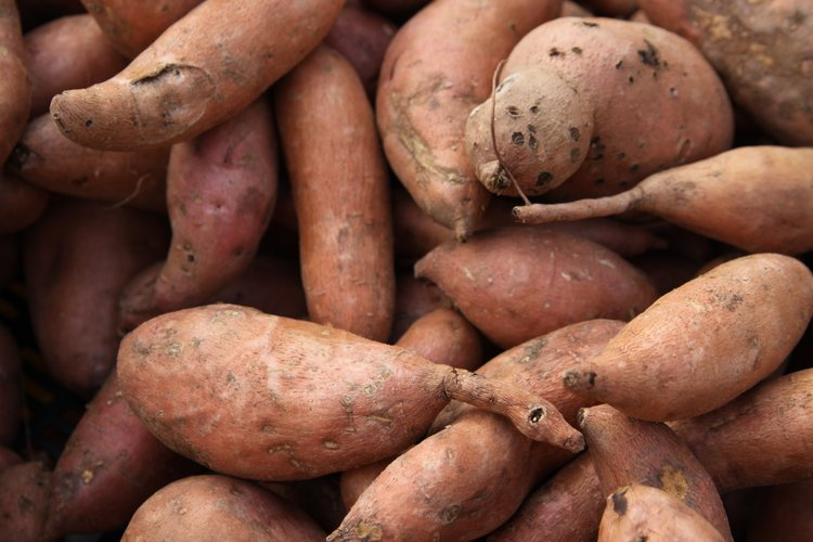 Sweet potatoes can be stored for up to a year when kept in a well ventilated location with 85% humidity and a temperature range between 55 and 60 degrees Fahrenheit.