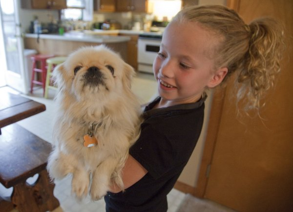 Claire Arnold, 8, holds her dog Taffy on Monday, Sept. 24, 2012, in her Eudora home. Claire and her brother Zach, 6, have been diagnosed with cystic fibosis, a chronic lung disorder. The two children do breathing treatments twice a day and take medicine but despite the disorder, they lead an active lifestyle.
