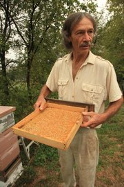 Richard Bean explains the pollen in a box that the bees bring to the hive contains a lot of protein the bees eat during the year.