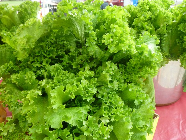 Fresh, crisp mustard greens can be found in abundance at Cottin's Hardware Farmers Market.
