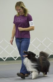 Siouxsan Eisen, Kearney, MO., competes in the Novice B Obedience event with her dog Pinch at the Lawrence Jayhawk Kennel Club all-breed dog show Saturday, Oct. 13, 2012, at the Douglas County Fairgrounds. The event continues today.
