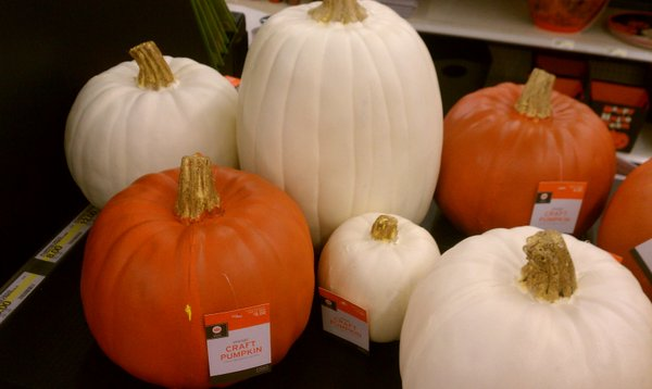 Faux pumpkins are available in different sizes, shapes and colors.