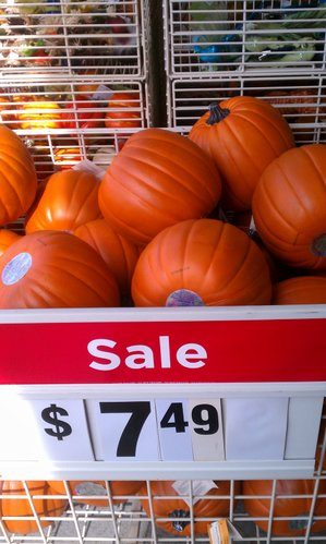 We found that faux pumpkins typically cost more than real ones, but they will last more than one season.