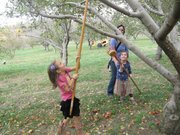 Cordley Elementary School student Giulia Ventello uses a basket on a pole to snag apples from high branches Sunday, Oct. 21, at Fieldstone Orchard in Overbrook. Schoolmate Ella Hope-Luecke and her mother, Karen Lueke, were nearby.