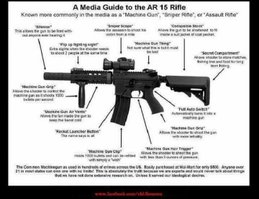 "Did the ""assault"" rifle look like this?"