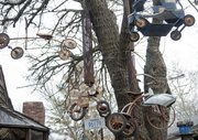 "Old tricycles hang in a tree in front of Nick Schmiedeler's house at 710 Missouri St. Schmiedeler's home is one of two Lawrence residences scheduled to be featured on upcoming episodes of HGTV's ""Home Strange Home."""