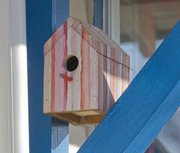 A colorful birdhouse hangs on the porch at Julie Trowbridge-Alford's house. More generally designed houses attract a number of other birds, and a few species will be happy to nest just about anywhere you let them.