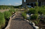 "A rain garden at the Lewis and Clark Boathouse and Nature Center in St. Charles, Mo., is pictured. Rain gardens are designed to help with stormwater management in urban settings while also being aesthetically pleasing. On Feb. 9, the Missouri Prairie Foundation/Grow Native! is presenting ""Native Landscaping and Rain Gardens"" at the Douglas County 4-H Fairgrounds Building No. 1, 2110 Harper St."