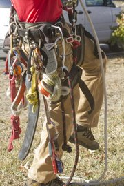 Arborist Dan Parker-Timms' gear may look cumbersome but is all essential.