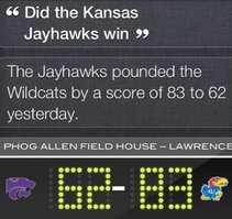 Rock Chalk Siri Hawk