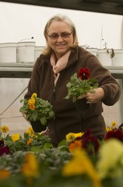 Crystal Miles, who manages the city's horticulture and forestry department, looks at some pansies, just some of the 31,000 flowers and bulbs that will adorn the city's flower beds.
