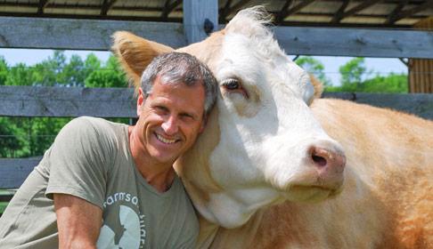 Publicity photo of famous animal activist Gene Baur with a cow.